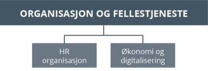 Organisasjonskart-org og fellestj-v10