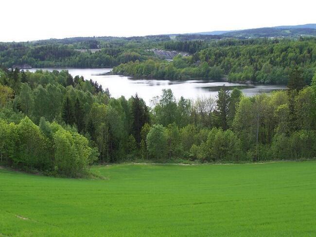 Foto av det grønne landskapet ved Årungen