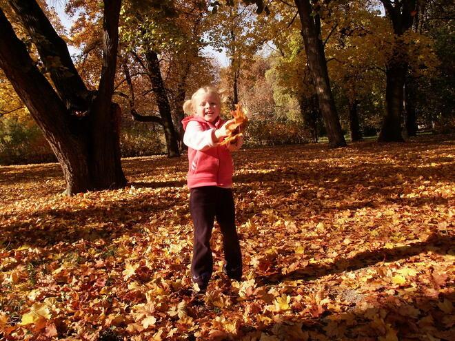 autumn-1564069