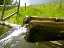 vann fra renne_300x225